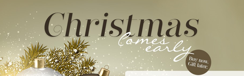 Top Christmas Picks. Buy Now, Gift Later - The TJC Blog